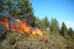 ΛΑΣ Ικαρίας  -Παρατηρήσεις στο Ειδικό Σχέδιο Αντιμετώπισης Εκτάκτων Αναγκών εξαιτίας Δασικών Πυρκαγιών του Δήμου Ικαρίας