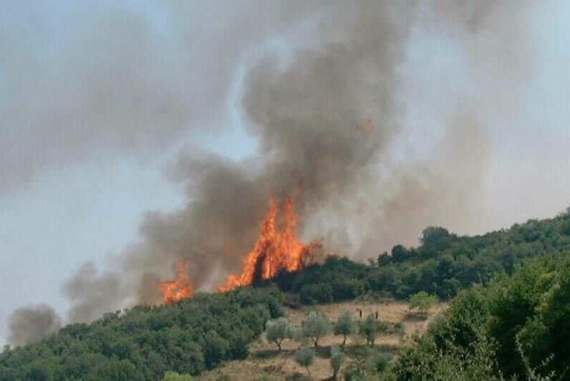 Η Λαϊκή Συσπείρωση για την πρόληψη δασικών και αγροτικών πυρκαγιών
